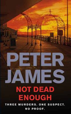 Not Dead Enough (Paperback)