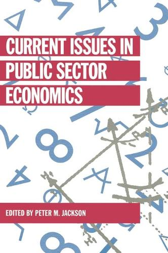 Current Issues in Public Sector Economics - Current Issues in Economics v. 7 (Paperback)