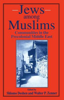 Jews among Muslims: Communities in the Precolonial Middle East (Paperback)