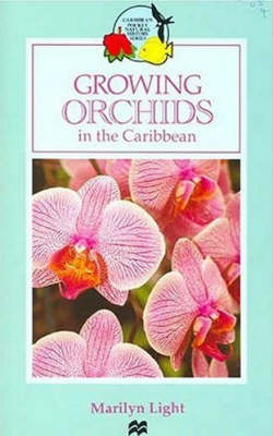 Growing Orchids in the Caribbean - Macmillan Caribbean Natural History (Paperback)