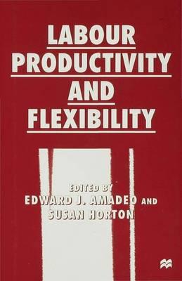 Labour Productivity and Flexibility (Hardback)