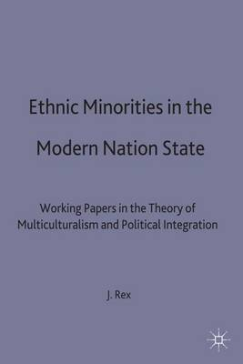 Ethnic Minorities in the Modern Nation State: Working Papers in the Theory of Multiculturalism and Political Integration - Migration Minorities and Citizenship (Hardback)