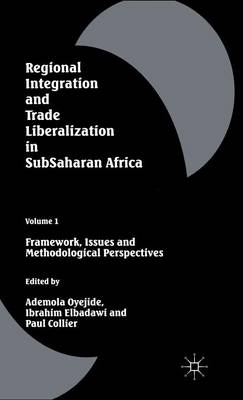 Regional Integration and Trade Liberalization in Subsaharan Africa: Volume 1: Framework, Issues and Methodological Perspectives (Hardback)
