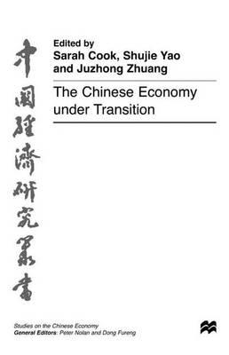 The Chinese Economy under Transition - Studies on the Chinese Economy (Hardback)