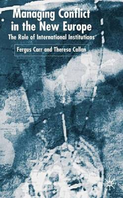 Managing Conflict in the New Europe: The Role of International Institutions (Hardback)