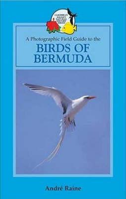 Birds of Bermuda - Macmillan Caribbean Natural History (Paperback)
