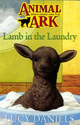 Lamb in the Laundry - Animal Ark 173 (Paperback)