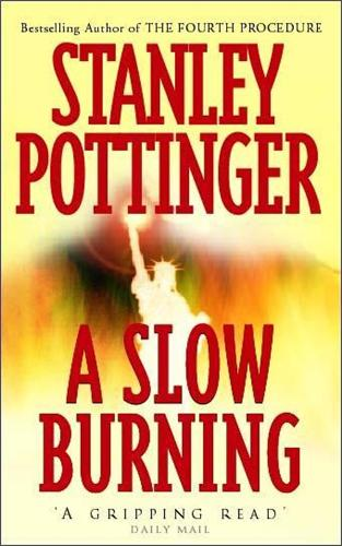 A Slow Burning (Paperback)