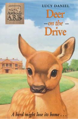 Deer on the Drive - Animal Ark No. 199 (Paperback)