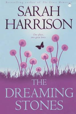 The Dreaming Stones (Paperback)