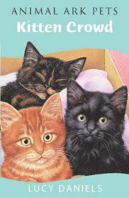 Kitten Crowd - Animal Ark Pets No. 5 (Paperback)