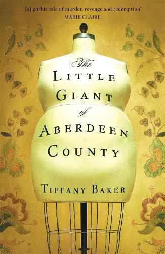 The Little Giant of Aberdeen County (Paperback)