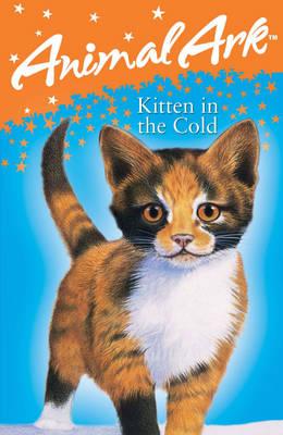 Kitten in the Cold - Animal Ark 9 (Paperback)
