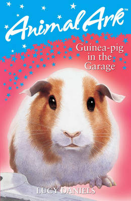 Guinea-Pig in the Garage - Animal Ark 280 (Paperback)