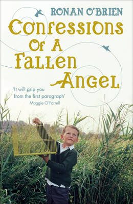 Confessions of a Fallen Angel (Paperback)