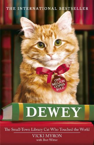 Dewey: The small-town library-cat who touched the world (Paperback)