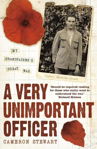 A Very Unimportant Officer (Paperback)
