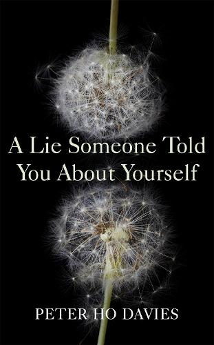 A Lie Someone Told You About Yourself (Hardback)