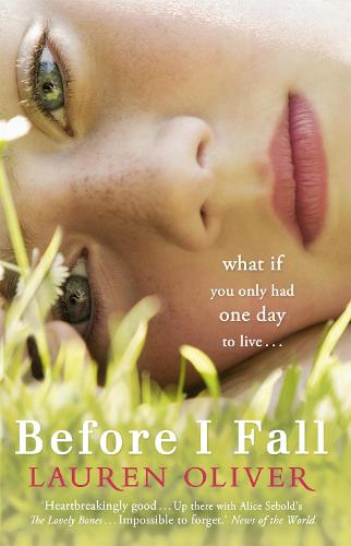 Image result for before i fall book