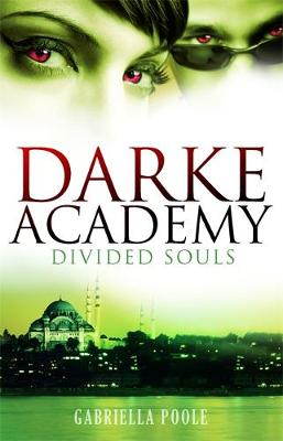 Divided Souls: Book 3 - Darke Academy (Paperback)