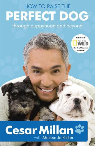 How to Raise the Perfect Dog (Paperback)