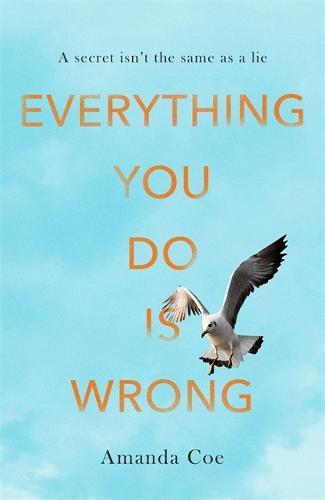Everything You Do Is Wrong (Hardback)