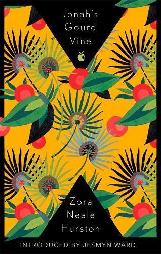 Jonah's Gourd Vine - Virago Modern Classics (Paperback)