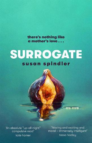 Surrogate (Hardback)