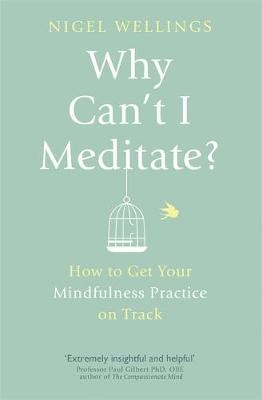 Why Can't I Meditate?: how to get your mindfulness practice on track (Paperback)
