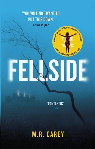 Fellside (Paperback)
