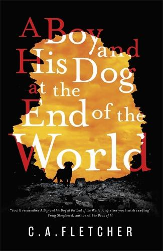 A Boy and his Dog at the End of the World (Hardback)
