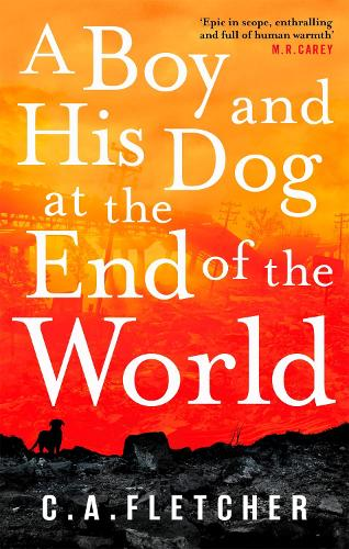 A Boy and his Dog at the End of the World (Paperback)