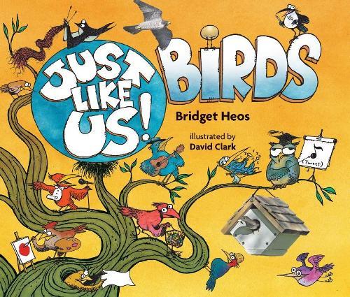 Just Like Us! Birds (Paperback)