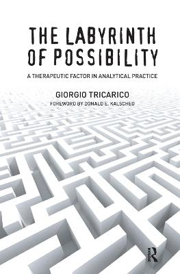 The Labyrinth of Possibility: A Therapeutic Factor in Analytical Practice (Hardback)
