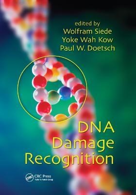 DNA Damage Recognition (Paperback)