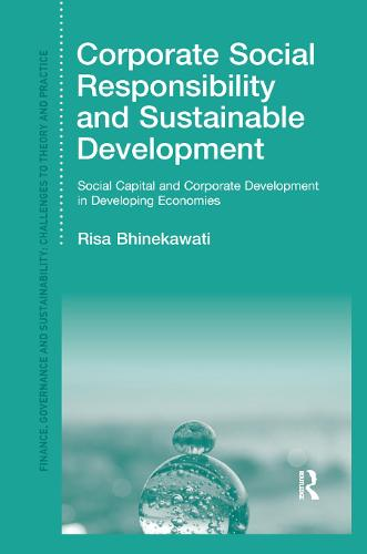Corporate Social Responsibility and Sustainable Development: Social Capital and Corporate Development in Developing Economies (Paperback)