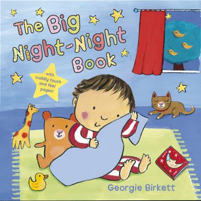 The Big Night-night Book (Board book)
