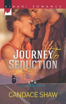 Journey To Seduction: Chasing Love (Paperback)