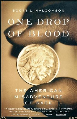 One Drop of Blood: The American Misadventure of Race (Paperback)