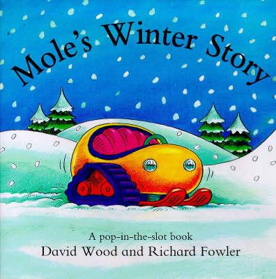 Mole's Winter Story (Hardback)