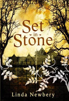 Set in Stone (Hardback)