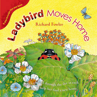 Ladybird Moves Home (Hardback)