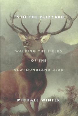 Into The Blizzard: Walking the Fields of the Newfoundland Dead (Hardback)