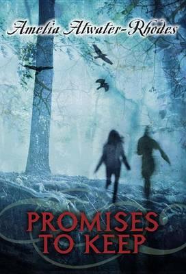 Promises To Keep (Hardback)