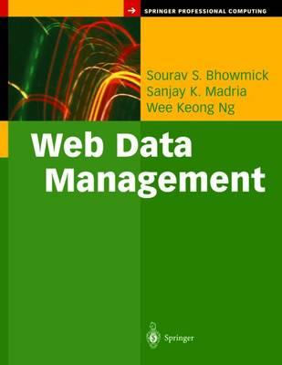 Web Data Management: A Warehouse Approach - Springer Professional Computing (Hardback)