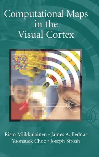 Computational Maps in the Visual Cortex (Hardback)