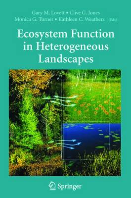 Ecosystem Function in Heterogeneous Landscapes (Paperback)