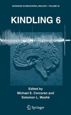 Kindling 6 - Advances in Behavioral Biology 55 (Hardback)
