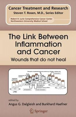 The Link Between Inflammation and Cancer: Wounds that do not heal - Cancer Treatment and Research 130 (Hardback)