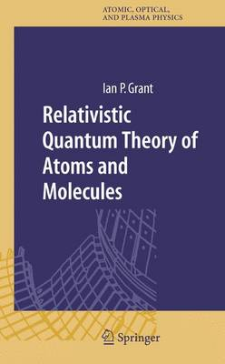 Relativistic Quantum Theory of Atoms and Molecules: Theory and Computation - Springer Series on Atomic, Optical, and Plasma Physics 40 (Hardback)